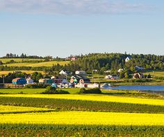World's Best Islands | No. 5 Prince Edward Island, Canada - Where to Stay: Dalvay-by-the-Sea, Tudor-style cottages on the edge of picturesque Prince Edward Island National Park, with Adirondack chairs dotting the expansive lawn and water views.