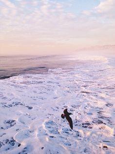 Ocean sunset | VSCO