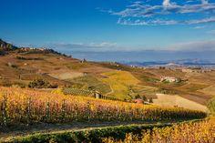 Le vigne in autunno - La Morra vista da Vergne (Langhe, Italy)