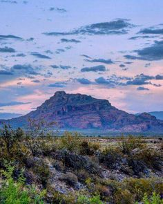 Red Mountain Phoenix, AZ