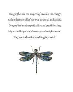I love the meaning of the dragonfly. I think we should strive to continually transform into better versions of ourselves. Dragonfly Quotes, Dragonfly Symbolism, Dragonfly Art, Dragonfly Tattoo, Dragonfly Meaning Spiritual, Butterfly Quotes, Dragonfly Jewelry, Animal Spirit Guides, Spirit Animal