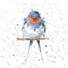 Feeling Blue - Greeting card featuring a swallow from artist Hannah Dale at Wrendale Designs Watercolor Bird, Watercolor Animals, Watercolor Paintings, Bird Drawings, Animal Drawings, Wrendale Designs, Art Inspiration Drawing, Christmas Drawing, Bird Illustration