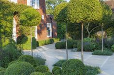 Lynn Marcus garden design