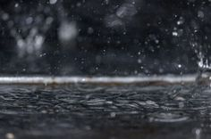 Listen To The Rhythm Of The Falling Rain Photo by Nikhil (Mace) -- National Geographic Your Shot