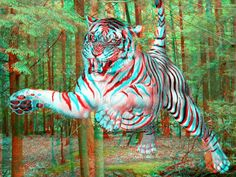 Animate white-tiger jumping in a real woods background. Watching a movie in three-dimensions (3D) is pretty exciting, and it ...