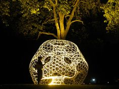 Biomimetic architecture? Looks cool whatever (exploration of light, textiles and future gardening)