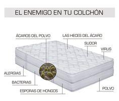 ácaros colchón