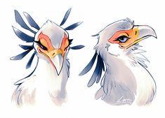 "Lintu ✨ on Twitter: ""secretary birds have fabulous mascara … """