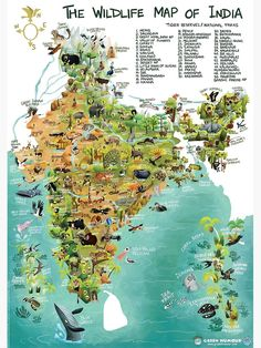 India Poster, India Map, Wildlife Of India, Different Types Of Houses, Framed Art Prints, Canvas Prints, Public Space Design, Geography Map, Wildlife Paintings