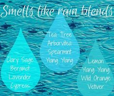 Petrichor - the earthy scent produced when rain falls on dry soil. One of my favourite scents. I am trying some diffuser blends to…