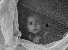 Beirut e i rifugiati siriani in Libano