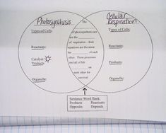 Tips and Tools for Teaching Photosynthesis and Respiration in High ...