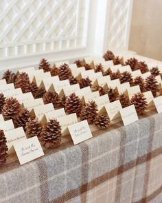 Calligraphed cards nestled between pinecones on a flannel blanket