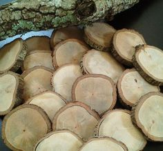 MEDIUM (Set of 20) Natural Oak Tree discs for Crafts, DIY projects, Rustic Wedding Decor, Coasters $28. Just a thought... These would be great wedding favors with names or (initials) carved into them, with the date and mini wedding cakes on top... all placed in a cute/rustic, box/packaging! A resemblance to the actual wedding cake :).