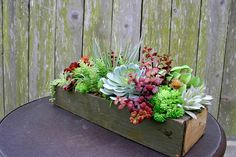 Long Faux Succulent Arrangement Centerpiece Succulent
