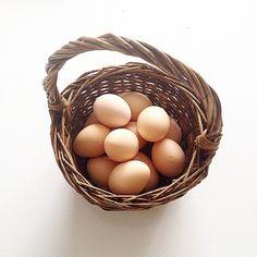 🐓 #æg #økologi #organic #øko #egg #dværghøns