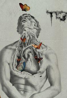 """ Digital collage by Michele Parliament "" Anatomy/fantasy. Arte Com Grey's Anatomy, Anatomy Art, Illustration Botanique, Illustration Art, Illustrations, Art Sketches, Art Drawings, Gcse Art Sketchbook, Death Art"