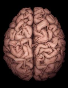 Brain - awesomely interesting facts, images & videos