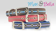 Fashion Dog Collar - Street Stripe by Max & Bella $19.95  The Ultimate gift to spoil your beloved pet: Designer dog collar Quality Max & Bella brand Available in Blue and Pink only #Max #DogCollar #MyDogSupplies