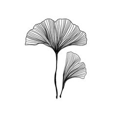 Feuilles de Gingko Tatoo temporaire lot de 2