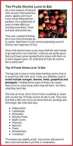 worm composting - Ten Fruits Worms Love to Eat - From Uncle Jim's Worm Farm Newsletter, Compost Soil, Garden Compost, Worm Composting, Earthworm Farm, Worm Beds, Red Worms, Earthworms, Aquaponics, Fruit Trees