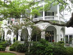 Nice Holiday Inn and the price was good for Charleston. Description from virtualtourist.com. I searched for this on bing.com/images