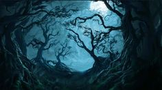 The Forbidden Forest, also known as Dark Forest borders the edges of the Hogwarts School of. Forest Drawing, Forest Art, Dark Forest, Haunted Woods, Haunted Forest, Which Hogwarts House, Hogwarts Houses, Animal Jam, Forbidden Forest