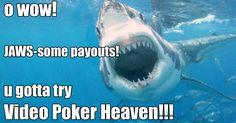 Play Video Poker!