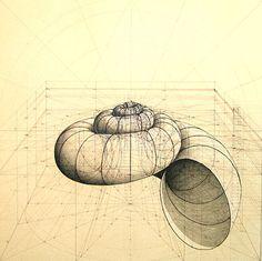 Obras de Rafael Araujo / Sacred Geometry https://www.facebook.com/pages/Healthy-Vibrant-You/381747648567846: