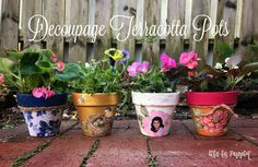 7 Best Clay Pot Ideas Images On Pinterest Do It Yourself