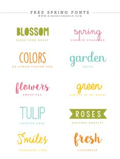 Spring fonts inspiration Photoshop templates for photographers by Birdesign Fancy Fonts, Cool Fonts, New Fonts, Spring Font, Typographie Fonts, Photoshop Fonts, Free Photoshop, Aesthetic Fonts, Font Packs