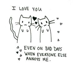 I love you even on bad days when everyone else annoys me :) cute cat quote! The Words, Quotes To Live By, Me Quotes, Friend Quotes, Crush Quotes, Love Of My Life, My Love, I Love You Funny, Reasons Why I Love You