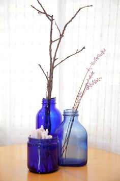 Instead of bottles in trees, how about trees in bottles? This turn around idea looks lovely