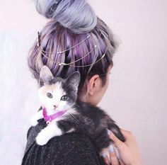 Imagen de cat, hair, and fashion Purple Violet Red Cherry Pink Bright Hair Colour Color Coloured Colored Fire Style curls haircut lilac lavender short long mermaid blue green teal orange hippy boho Pulp Riot