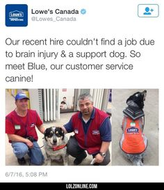 Good Guy Canadian Lowe's
