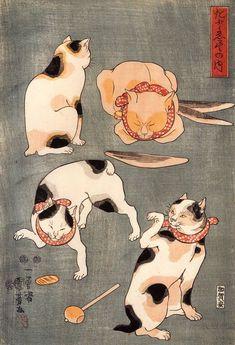 Japanese Ukiyo e illustration of black, white and ginger cats by artist Kuniyoshi Utagawa