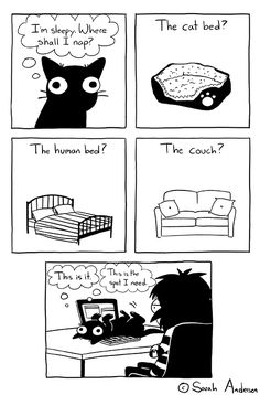 Sarah Andersen Sarah's Scribbles hilarious cat comics for cat owners about pet cats and kittens. Funny Shit, 9gag Funny, Funny Cats, Funny Memes, Hilarious, Funniest Memes, Funny Tumblr Comments, Tumblr Funny, Funny Cartoons
