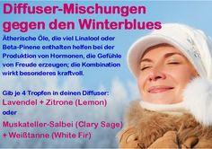 Diffuser-Mischung gegen den Winterblues mit doTERRA ätherischen Ölen. Mehr Glückshormone in der kalten Jahreszeit!