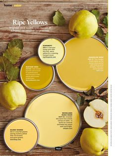 Better Homes and Gardens Ripe Yellows