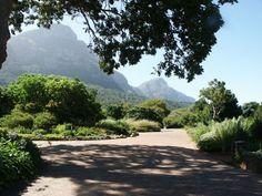 Kirstenbosch National Botanical Garden - Wikipedia, the free encyclopedia