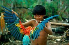 Xingu - Amazonas