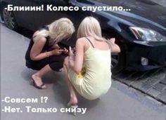 "Приколы про блондинок: парковка двух ""леди"" - это всегда умора  https://joinfo.ua/sociaty/1198803_Prikoli-blondinok-parkovka-dvuh-ledi---eto-umora.html"