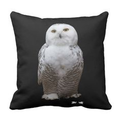 Million Just Because Love greeting by Kat Worth Throw Pillow