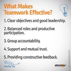 What Makes Teamwork Effective?