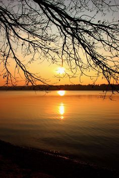 Sunset Sun Sky Nature Beauty In Nature Scenics Tranquility Reflection Tranquil Scene Water Sea No People Tree Idyllic Outdoors Horizon Over Water Starnbergersee Starnberg Starnberger See Bavaria Bavarian Landscape Bavarian Bayern Bayern München