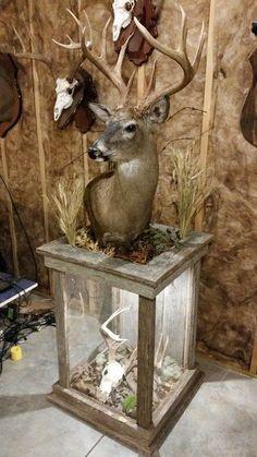 Barnwood Pedestal Fo Barnwood Pedestal For Whitetail Mount Deer Mount Decor, Deer Decor, Taxidermy Decor, Taxidermy Display, Hunting Home Decor, Deer Antler Crafts, Antler Art, Deer Mounts, Deer Pictures