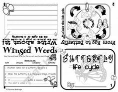 Butterfly Life Cycle Flippy Book