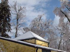 Ashland, The Henry Clay Estate, January 2009 - Lexington, KY