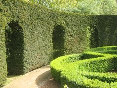 Using hedging as an architectural device - great way to avoid hard surfaces in a garden. #gardendesign