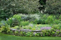 Nice resident-designed and built raised planting in Vermont. Do your homework and get help when you need it, and you can be a fine garden designer yourself. This is a lovely naturalistic planting that is an excellent achievement.